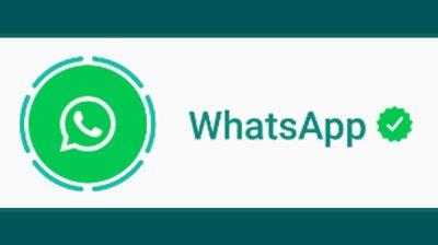 如何静音和取消静音WhatsApp状态