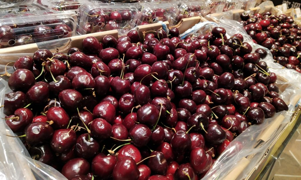 每日英语新闻:本季度将有六千万箱智利樱桃运往中国