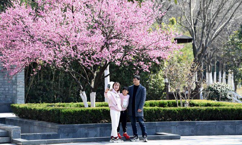 春节期间,国内旅游业发展迅猛,旅客更青睐短途旅游