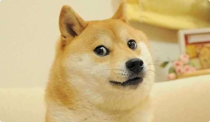 """中国科技巨头竞相争夺"""" Doge""""表情符号的商标"""