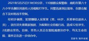 河南66岁男子持棍行凶,致12名学生2名群众受伤:仅因生活失意