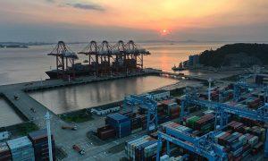 宁波舟山港码头发现1例新冠病毒核酸检测阳性人员